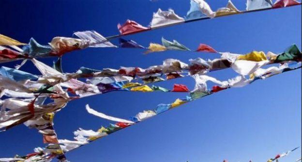 Northwest Sangha Celebration Saturday Nov 3rd!